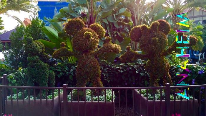 Disney Plants