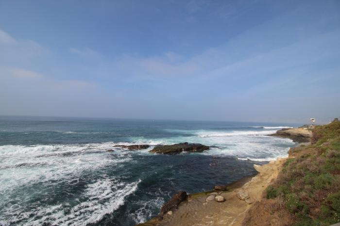 La Jolla Cove 2 3-1-16