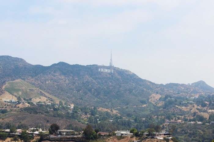 Hollywood Hills in May