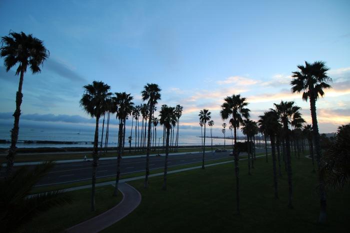 Santa Barbara Pier and Palm Trees