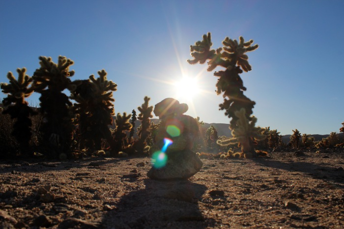 14-cactus-and-rock-formation-joshua-tree-national-park