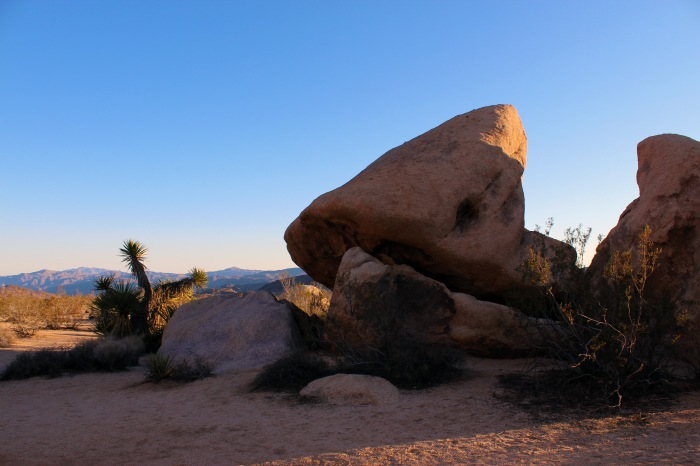 19-joshua-tree-bulders
