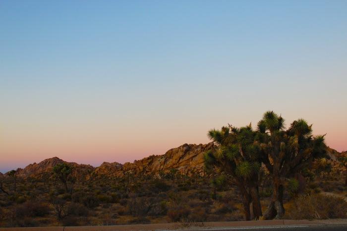 29-desert-sunset-joshua-tree-national-park