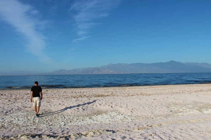 Salton Sea - David