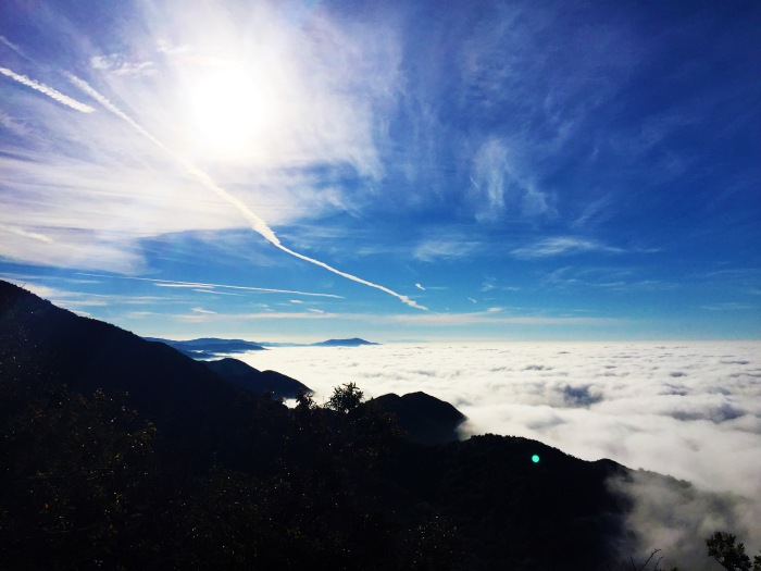 Head above the clouds - Santa Barbara, CA