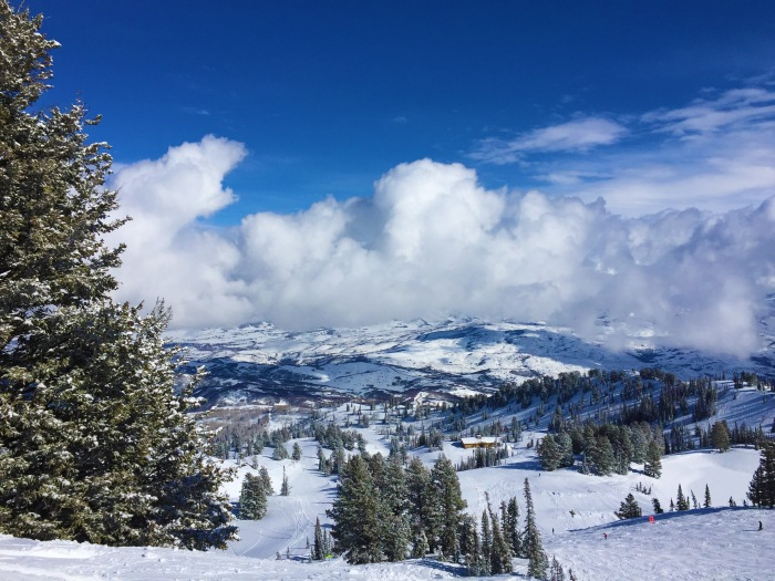 Snow Basin Landscape